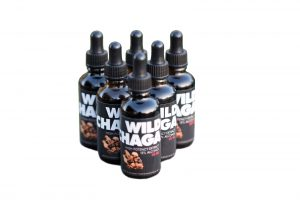 Wild Chaga Mushroom proven effective against SARS-CoV-2 by Scientific Research